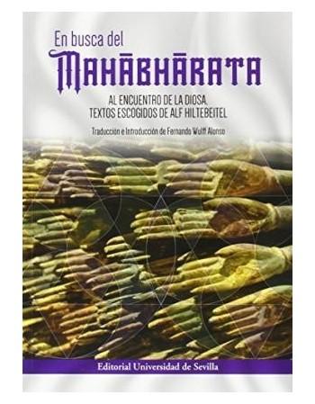 En busca del Mahabharata....