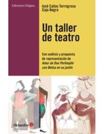 Un taller de teatro